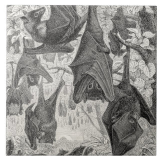 Vintage 1800s Flying Fox Bat Retro Template Bats Tile