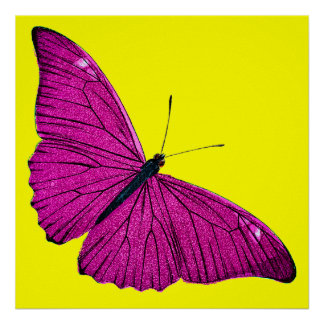 Vintage 1800s Fuchsia Hot Pink Yellow Butterfly Poster