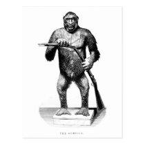 Vintage 1800s Gorilla - Apes and Gorillas Template Postcard