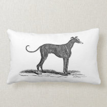 Vintage 1800s Greyhound Dog Illustration - Dogs Lumbar Pillow