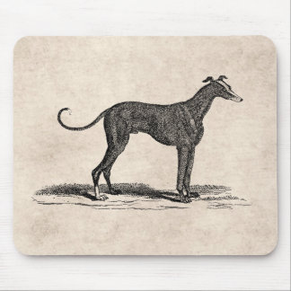 Vintage 1800s Greyhound Dog Illustration - Dogs Mouse Pad