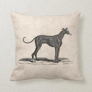 Vintage 1800s Greyhound Dog Illustration - Dogs Pillow