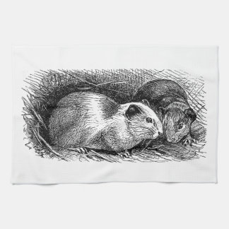 Vintage 1800s Guinea Pig Illustration Retro Pigs Towel