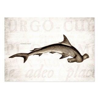 Vintage 1800s Hammerhead Shark Old Hammer Head Large Business Cards (Pack Of 100)