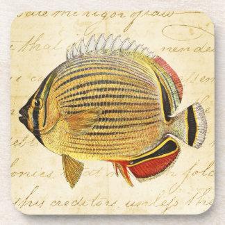 Vintage 1800s Hawaiian Butterfly Fish Illustration Drink Coasters