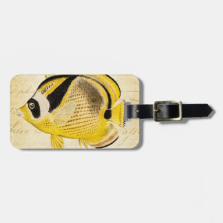 Vintage 1800s Hawaiian Butterfly Fish Illustration Luggage Tag