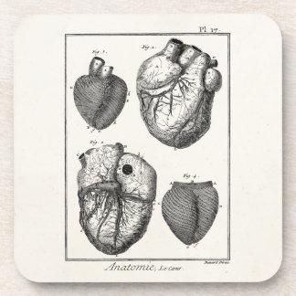 Vintage 1800s Heart Retro Cardiac Anatomy Hearts Coaster