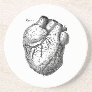 Vintage 1800s Heart Retro Cardiac Anatomy Hearts Drink Coaster