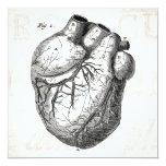 Vintage 1800s Heart Retro Cardiac Anatomy Hearts Announcements