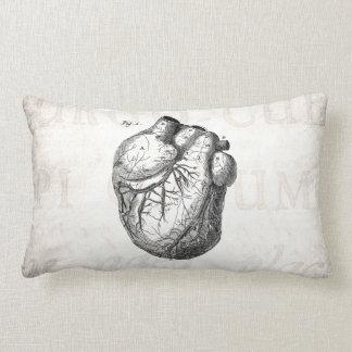 Vintage 1800s Heart Retro Cardiac Anatomy Hearts Lumbar Pillow