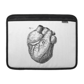 Vintage 1800s Heart Retro Cardiac Anatomy Hearts MacBook Air Sleeve