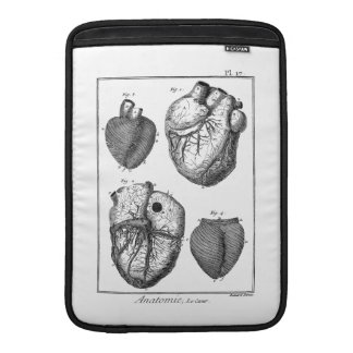 Vintage 1800s Heart Retro Cardiac Anatomy Hearts MacBook Air Sleeves