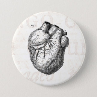 Vintage 1800s Heart Retro Cardiac Anatomy Hearts Pinback Button