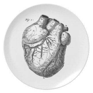 Vintage 1800s Heart Retro Cardiac Anatomy Hearts Plate