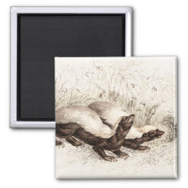 Vintage 1800s Honey Badger Bee Hive Template Retro Magnet