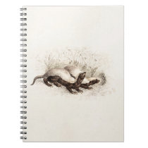 Vintage 1800s Honey Badger Bee Hive Template Retro Notebook