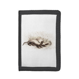 Vintage 1800s Honey Badger Bee Hive Template Retro Trifold Wallet