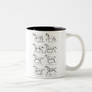 Vintage 1800s Horse Gaits Illustration Horses Two-Tone Coffee Mug