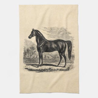 Equestrian kitchen towels zazzle vintage 1800s horse morgan equestrian template hand towel yadclub Images