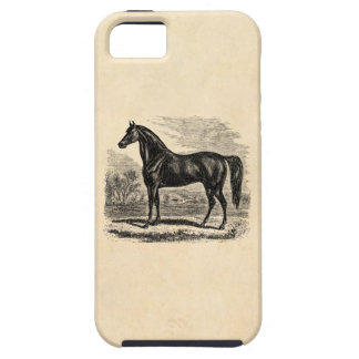 Vintage 1800s Horse - Morgan Equestrian Template iPhone SE/5/5s Case