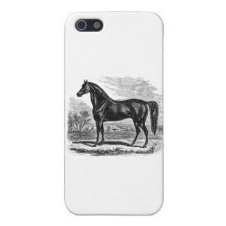 Vintage 1800s Horse - Morgan Equestrian Template iPhone SE/5/5s Case