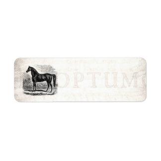 Vintage 1800s Horse - Morgan Equestrian Template Label