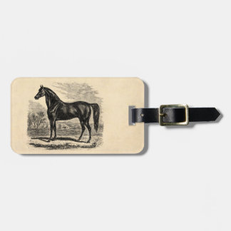 Vintage 1800s Horse - Morgan Equestrian Template Luggage Tag