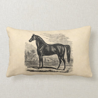 Vintage 1800s Horse - Morgan Equestrian Template Lumbar Pillow