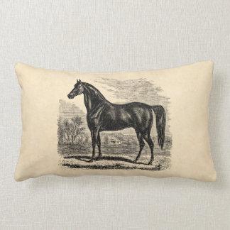 Vintage 1800s Horse - Morgan Equestrian Template Throw Pillows