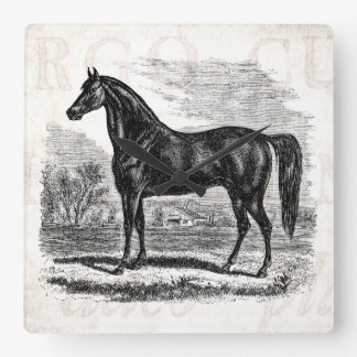 Vintage 1800s Horse - Morgan Equestrian Template Square Wall Clock
