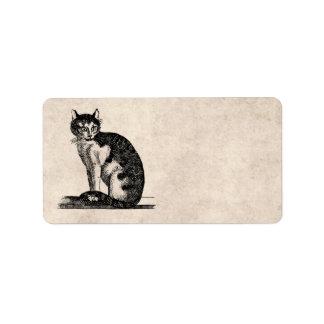 Vintage 1800s House Cat Illustration - Cats Label