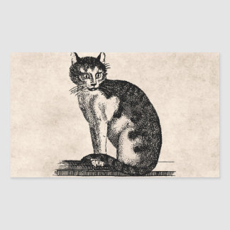 Vintage 1800s House Cat Illustration - Cats Rectangular Sticker