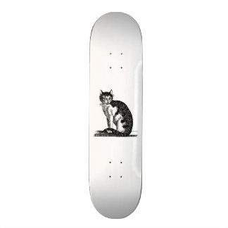 Vintage 1800s House Cat Illustration - Cats Skateboard Deck