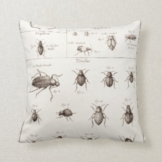 Vintage 1800s Insects Bugs Beetles Illustration Throw Pillow