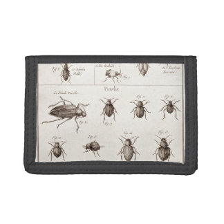 Vintage 1800s Insects Bugs Beetles Illustration Tri-fold Wallet