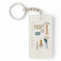 Vintage 1800s Jellyfish Illustration - Jelly Fish Keychain