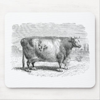 Vintage 1800s Large Durham Cow Retro Cows Template Mouse Pad