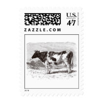 Vintage 1800s Large Dutch Cow Retro Cows Template Postage