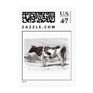 Vintage 1800s Large Dutch Cow Retro Cows Template Postage