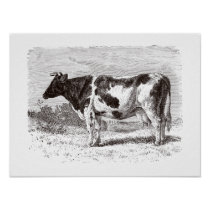 Vintage 1800s Large Dutch Cow Retro Cows Template Poster