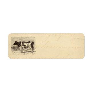 Vintage 1800s Large Dutch Cow Retro Cows Yellow Label