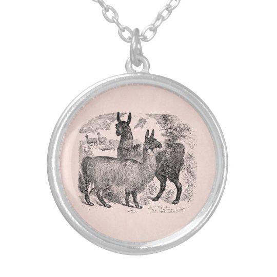vintage 1800s llama retro pink llamas template silver plated