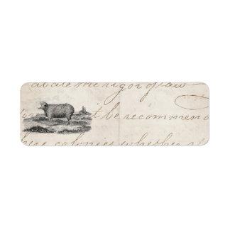 Vintage 1800s Merino Sheep Ewe Lamb Template Label