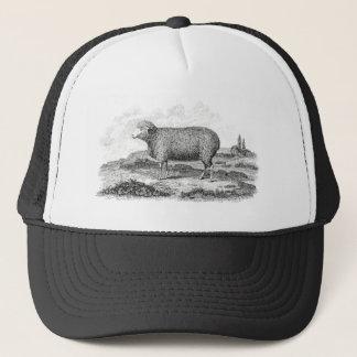 Vintage 1800s Merino Sheep Ewe Lamb Template Trucker Hat