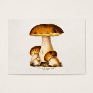 Vintage 1800s Mushroom Edible Mushrooms Template Business Card