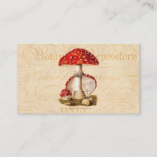 Vintage 1800s Mushroom Red Mushrooms Template Business