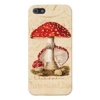 Vintage 1800s Mushroom Red Mushrooms Template Case For iPhone SE/5/5s