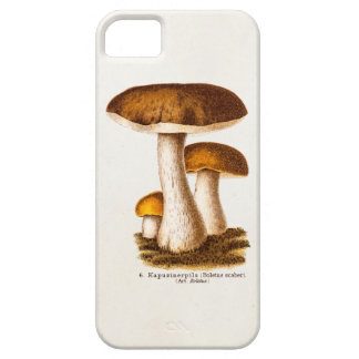 Vintage 1800s Mushroom Scaber Brown Mushrooms iPhone SE/5/5s Case