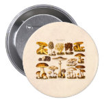 Vintage 1800s Mushroom Variety  Mushrooms Template Pinback Button