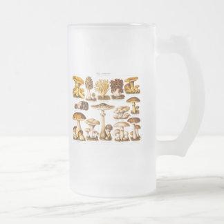 Vintage 1800s Mushroom Variety  Mushrooms Template Frosted Glass Beer Mug